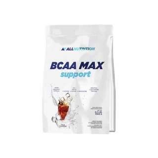 Аминокислоты AN BCAA Max Support 1000гр