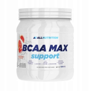 Аминокислоты AN BCAA Max Support 500гр
