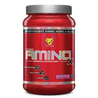Аминокислоты BSN Amino X 1,01кг